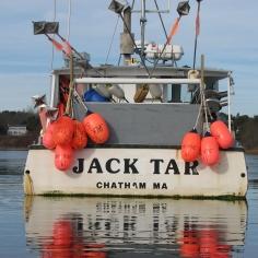 Jack Tar Transom